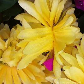 Gayle Price Thomas - Yellow Beauties