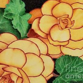 Sharon Patterson - Yellow Begonias