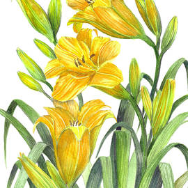 Farida Greenfield - Yellow Day Lillies