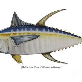Ted Reeves - Yellow Fin Tuna