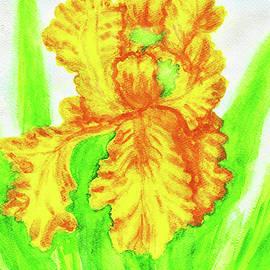 Irina  Afonskaya - Yellow iris, painting