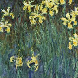 Yellow Irises - Claude Monet