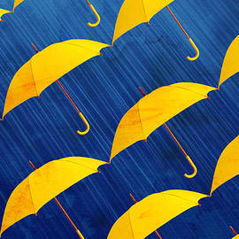 Tolga Meric - Yellow is the color
