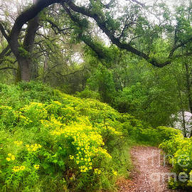 Leslie Wells - Yellow Path