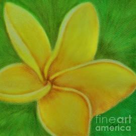 Olga Hamilton - Yellow Plumeria Flower