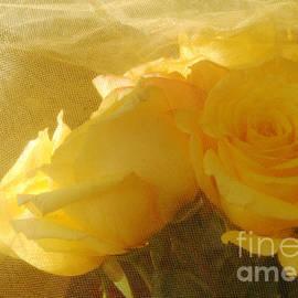 Georgia Sheron - Yellow Roses