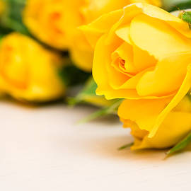 Nadezhda Tikhaia - Yellow Small Roses
