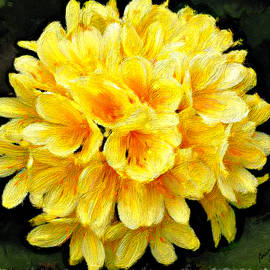 Bruce Nutting - Yellow Viburnum