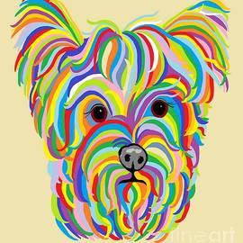 Eloise Schneider - Yorkshire Terrier ... Yorkie