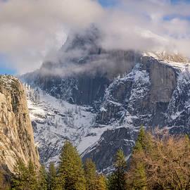 Michele James - Yosemite Valley