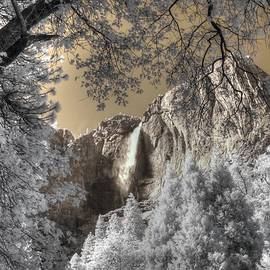 Jane Linders - Yosemite Waterfall
