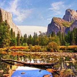 Lynn Bauer - Yosemite