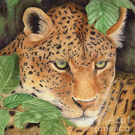 Christelle Grey - Young Leopard