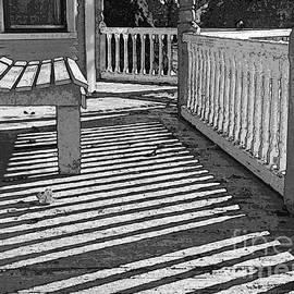 Betsy Zimmerli - Zebra Porch