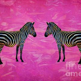 Terry Weaver - Zebra Reflection