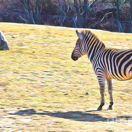 Terry Weaver - Zebra Standoff with Rock