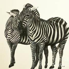Zina Stromberg - Zebras