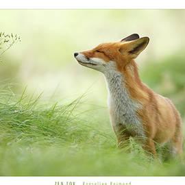 Roeselien Raimond - Zen Fox Roeselien Raimond