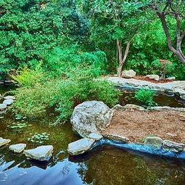 Kristina Deane - Zilker Japanese Botanical Garden II