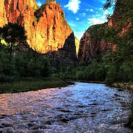 Allen Beatty - Zion N P # 50 - Riverwalk Cliffs