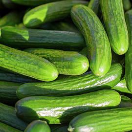 Zucchini Squash - Todd Klassy