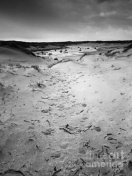 New Dunes by David Hanlon