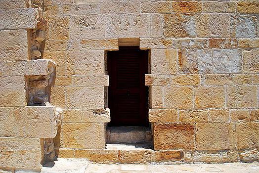 Ancient door  by Ivelina Angelova