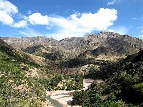 Bolivian landscape by Elizabeth Hardie