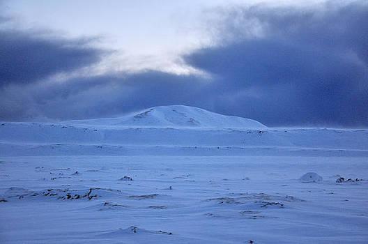 Desolate Winter by Alda Villiljos