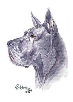 Dogo by David Iglesias