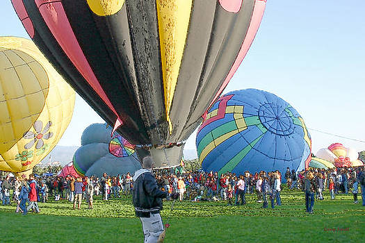 Hot Air Balloons V by Larry Small