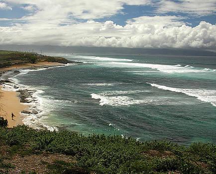 Maui  by Robert Lozen