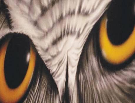 Owl Eyes by Christopher Fresquez