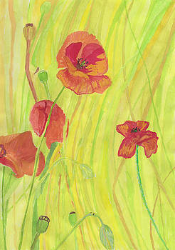 Poppies in The Grass by Moya Moon