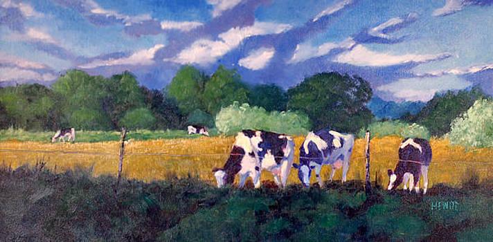 Quiet Pastures by Philip Hewitt