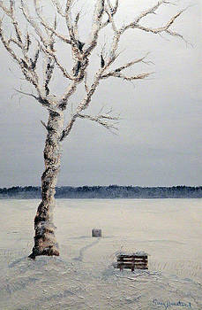 Solitude by Terry Honstead
