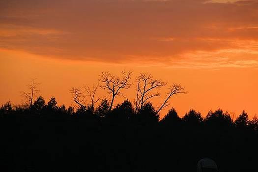 Winter sunset by Gary Pavlosky