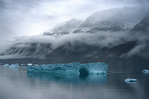 Large Icebergs In Scoresby Sound by Raul Touzon