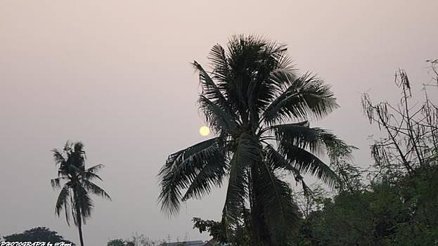 Beautiful Evening by Gornganogphatchara Kalapun