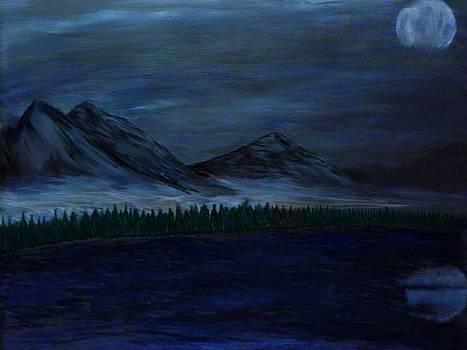 Midnight Moonlight by Andrew Siecienski