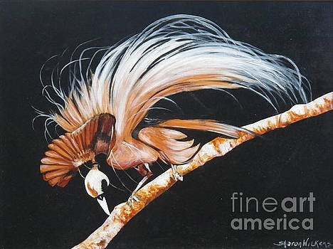 Bird of Paradise by Sharon Wilkens
