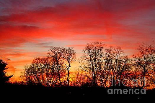 A Glowing January Sunrise by Jay Nodianos