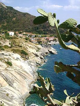 A typical Bay of Elba Island by Giuseppe Epifani
