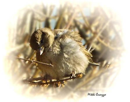 Bashful Bird by Mikki Cucuzzo