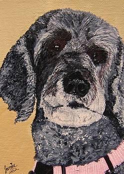 Beautiful Pup by Janice W Deetscreek