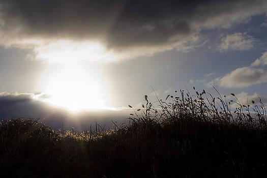 Beyond The Morning by Everett Houser