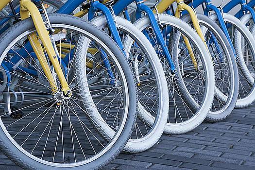 Bicycles by Volodymyr Kyrylyuk
