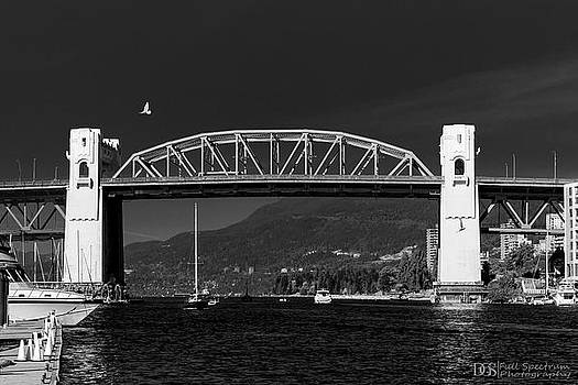 Bird Over The Burrard Street Bridge by DGS Full Spectrum Photography
