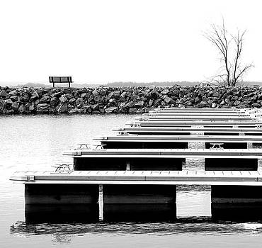 Black and white symmetry by Nathalie Deslauriers