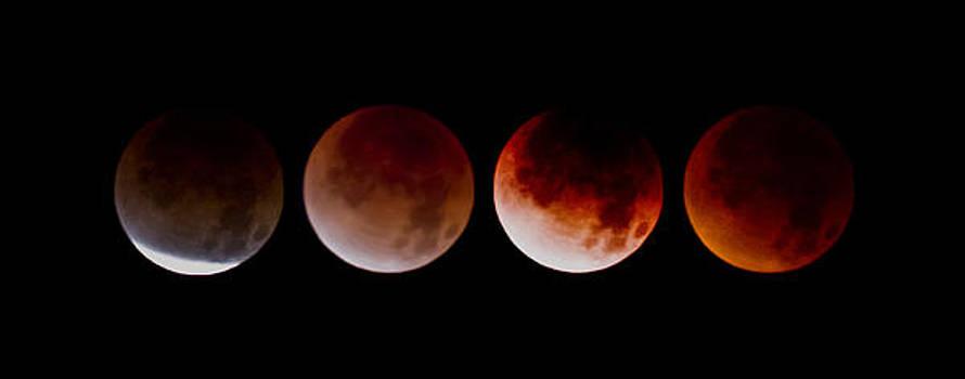 Blood Moon by Joel Loftus